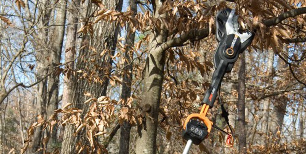 WORX Jawsaw cutting a tree branch