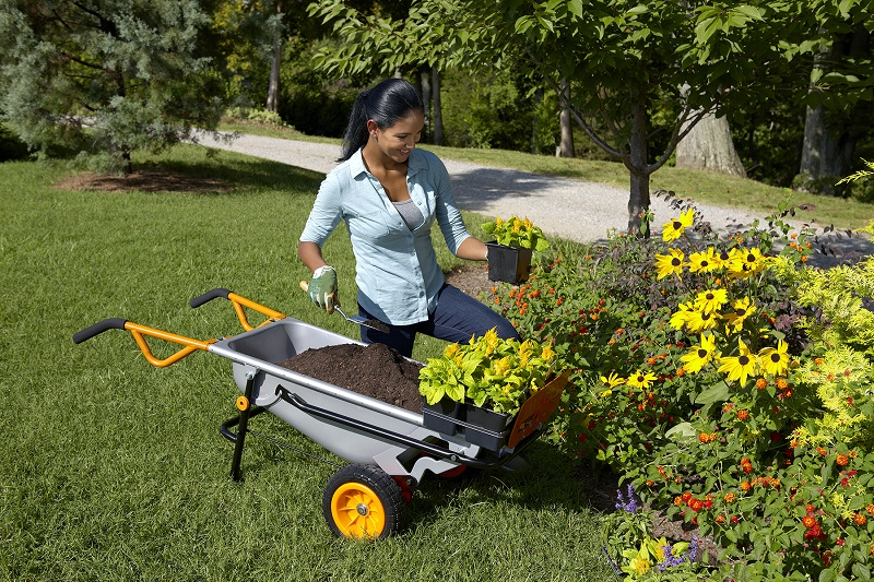 3 Pro Tricks To Keep Your Yard Looking Great All Season