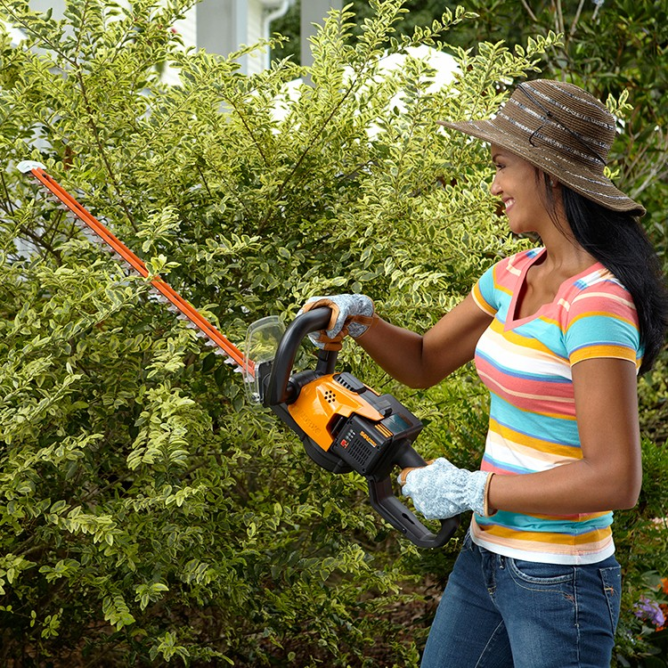 Country Gardens Features WORX 56V Hedge Trimmer 1