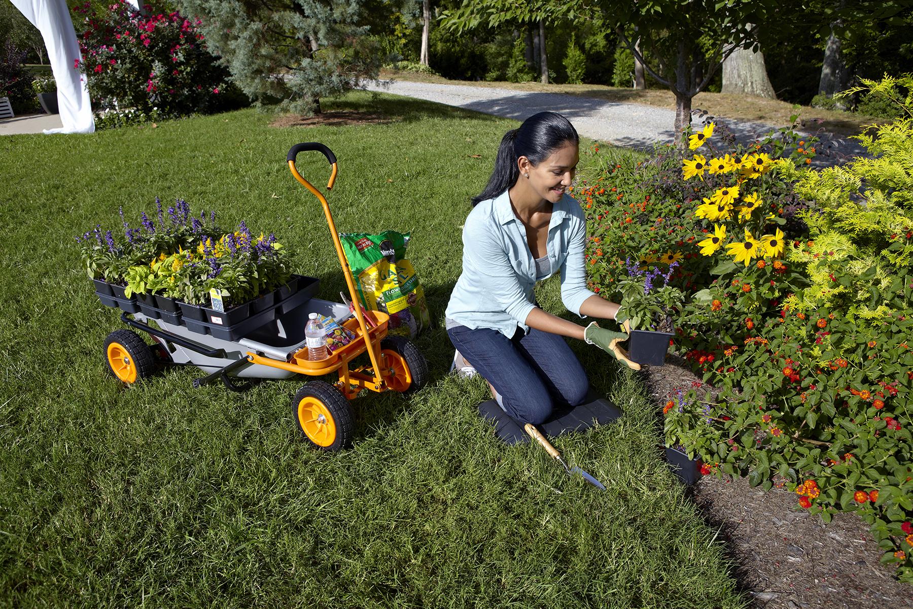 Creating A Baseline Garden Bed