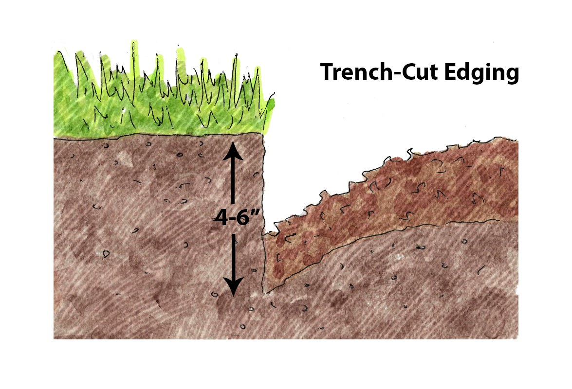 Trenched Egde_Illustration