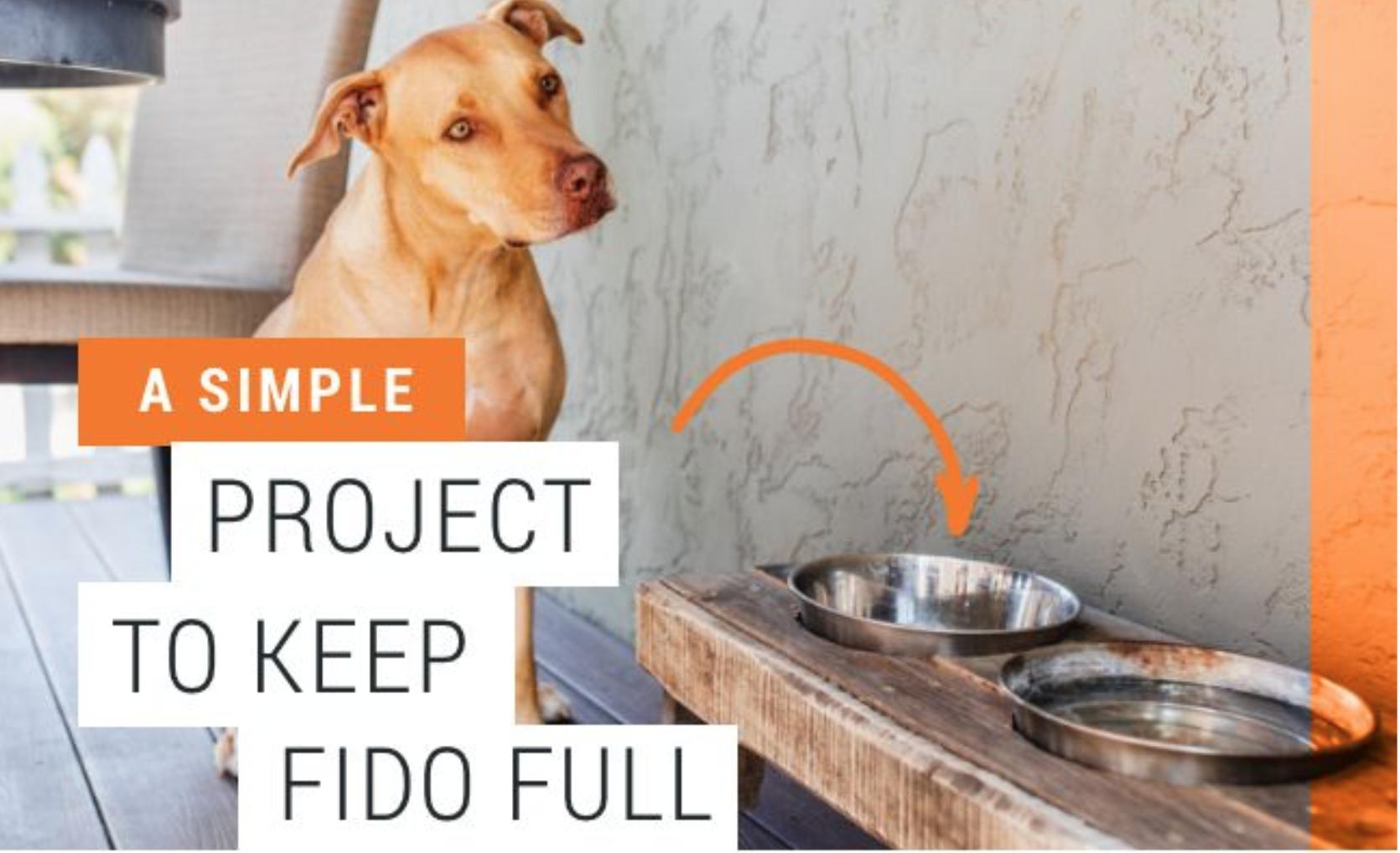 Project Fido A Diy Elevated Dog Bowl Feeder